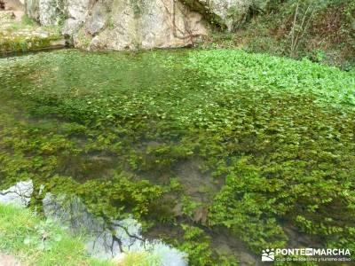 Parque Natural Monasterio de Piedra; ruta sierra de madrid; visitas guiadas madrid;montañas asturia